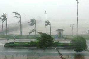Tháng Tám có thể sẽ xuất hiện 1-2 cơn bão ảnh hưởng đến đất liền