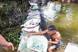 Hà Nam: Vỡ đê Bối, hàng trăm hộ dân chìm trong ngập lụt