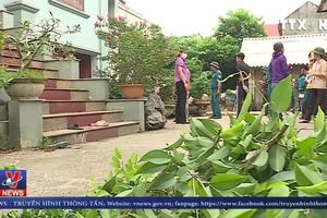 Nguy cơ dịch sốt xuất huyết ở Hà Nội