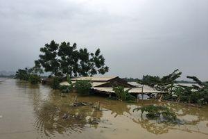 Chương Mỹ huy động mọi lực lượng ứng phó với những tình huống khẩn cấp do mưa lũ