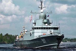 'Nhện độc' Karakurt hiện diện trong biên chế Hải quân Việt Nam?