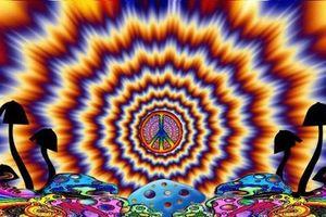 'Nấm ma thuật' được pháp sư sử dụng để liên lạc với các 'linh hồn'