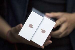Suýt cán mốc nghìn tỉ đô, Apple giúp Warren Buffett bỏ túi 2 tỉ USD