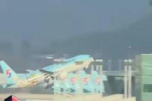 Lạ lùng bắt máy bay hạ cánh để đuổi tiếp viên