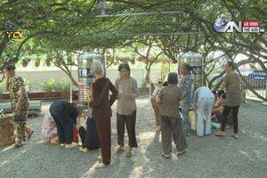 Thực hư khu vườn thần kỳ chữa bách bệnh ở Long An