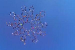 'Bông hoa người' khổng lồ trên bầu trời nước Mỹ