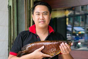 Chàng trai 'mất ăn mất ngủ' vì cá rồng
