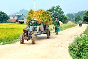 Phân bổ vốn Chương trình MTQG xây dựng nông thôn mới