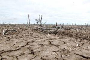 Khoảng 60 triệu người trên khắp thế giới chịu ảnh hưởng của El Nino