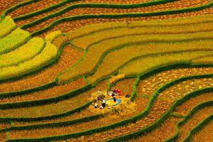 Tiếp tục là biểu trưng của du lịch Việt