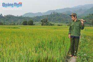 'Vua' ruộng lúa nước ở Mang He