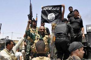 Khủng bố Al-Qaeda quay trở lại, nguy hiểm hơn cả IS