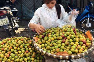 Những loại hoa quả Trung Quốc giả hàng 'made in Việt Nam'