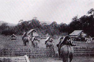 Ảnh độc về chuyến săn voi ở Tây Nguyên 100 năm trước
