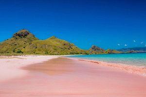 Choáng ngợp với những bãi biển màu hồng cực độc trên thế giới