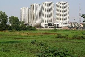 Hà Nội sẽ chuyển đổi 270,98ha đất trồng lúa sang đất phi nông nghiệp