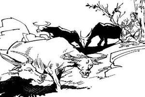 Chuyện ly kỳ về con nhà 'xướng ca', ẩn phận chăn trâu cắt cỏ trở thành vị quan hiển hách