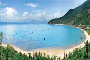 Sơn Trà phát triển du lịch sinh thái, nghỉ dưỡng cao cấp