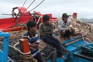 Phú Yên: Một tàu cá bị chìm, 4 ngư dân được cứu sống