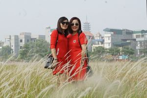 Ngắm nhìn cánh đồng lau bạt ngàn mùa trổ bông trong khu đô thị Linh Đàm