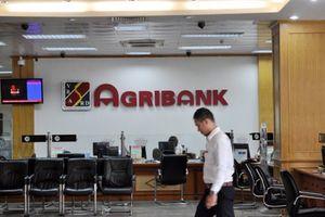 Những 'đứa con' bất trị của Agribank