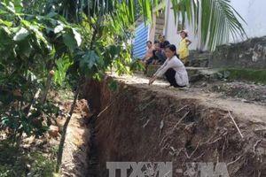 Sạt lở nghiêm trọng ở cù lao Tân Phong, Tiền Giang