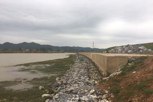 Công ty CP trục vớt luồng Hạ Lưu làm hỏng nặng đê sông Cầu: Cần sớm điều tra, xử lý trách nhiệm hình sự