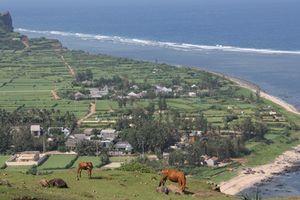 Quảng Ngãi ủng hộ xây khu nghỉ dưỡng, biệt thự sinh thái trên đảo Lý Sơn