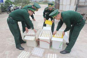 Đồn BP Bắc Sơn bắt vụ vận chuyển 24.000 quả trứng gà nhập lậu