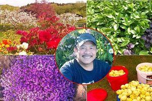 'Vườn địa đàng' đẹp như mơ chẳng thiếu cây gì của ông bố Việt ở Đức
