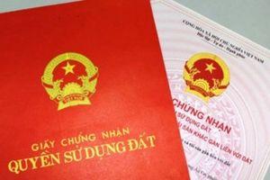 TP.HCM: Chậm cấp sổ hồng phải xin lỗi người nước ngoài