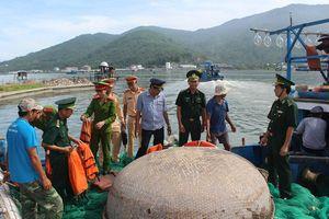 Kiên quyết xử lý phương tiện nghề cá 'đi nhầm' tuyến