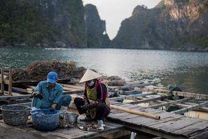 Việt Nam qua máy ảnh chục nghìn USD của khách Tây (2)