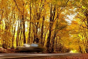 Ngất ngây cảnh sắc mùa thu tuyệt đẹp khắp thế giới