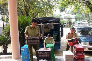 Bình Phước: Tịch thu hơn nửa tấn trái cây, cà rốt Trung Quốc nhập lậu