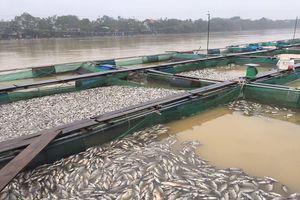 TT-Huế: 4 người chết, hơn 17.500 nhà dân bị ngập do mưa lũ