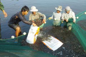 Quảng Ninh khuyến khích áp dụng KHCN vào nông nghiệp