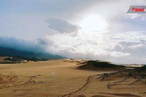 Đồi cát Sơn Hải, cuộc hành trình đầy nắng gió không dành cho những ai ngại khổ