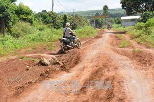 Sau 5 năm dân hiến đất, đường vẫn chưa được làm