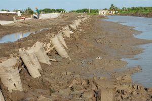 Ảnh hưởng của sụt lún đất đến hệ thống công trình thủy lợi tại Cà Mau