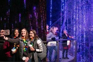 Lạc bước dưới dàn đèn Giáng sinh lung linh kỳ ảo tại khu vườn thực vật tại Mỹ