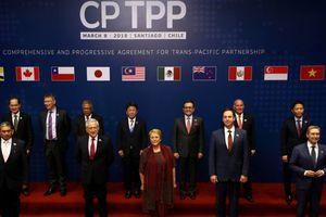Để tận dụng cơ hội CPTPP đem lại: Chủ động thay đổi mình