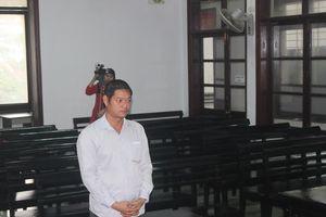 Công lý được thực thi: Bản án 4 năm 6 tháng tù cho đối tượng buôn bán hơn 10 tấn rùa biển