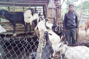 'Bà đỡ' của người nghèo ở huyện Krông Pa