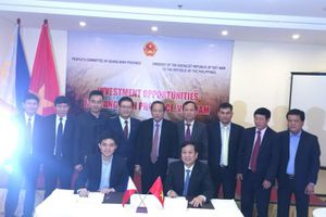 Nhà đầu tư Philippines nghiên cứu đầu tư điện gió, điện mặt trời tại Quảng Bình