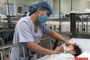 Nắng nóng đỉnh điểm, số ca viêm não Nhật Bản tăng đột biến