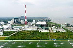 Nhà máy sản xuất giấy: Khi thách thức lớn nhất đến từ môi trường