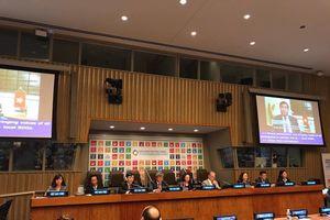 Việt Nam chính thức trình bày Báo cáo Quốc gia Tự nguyện về việc thực hiện các Mục tiêu Phát triển bền vững
