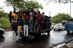 Khủng hoảng xe buýt, dân Venezuela 'đu' xe tải đi làm