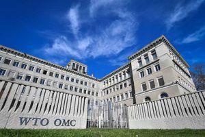 Đại chiến ở WTO